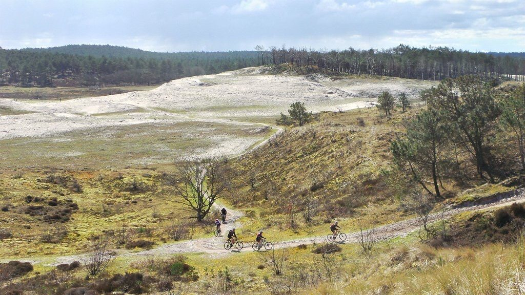 Schoorl, MTB, fietsen, duinen